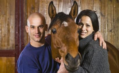 Übersicht der Anbieter für die Pferdehalterhaftpflichtversicherung