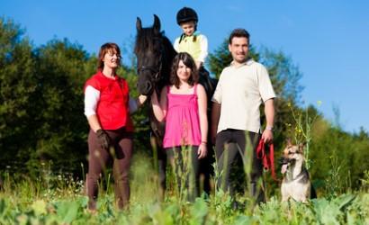 Übersicht der Anbieter für die Tierhalterhaftpflichtversicherung